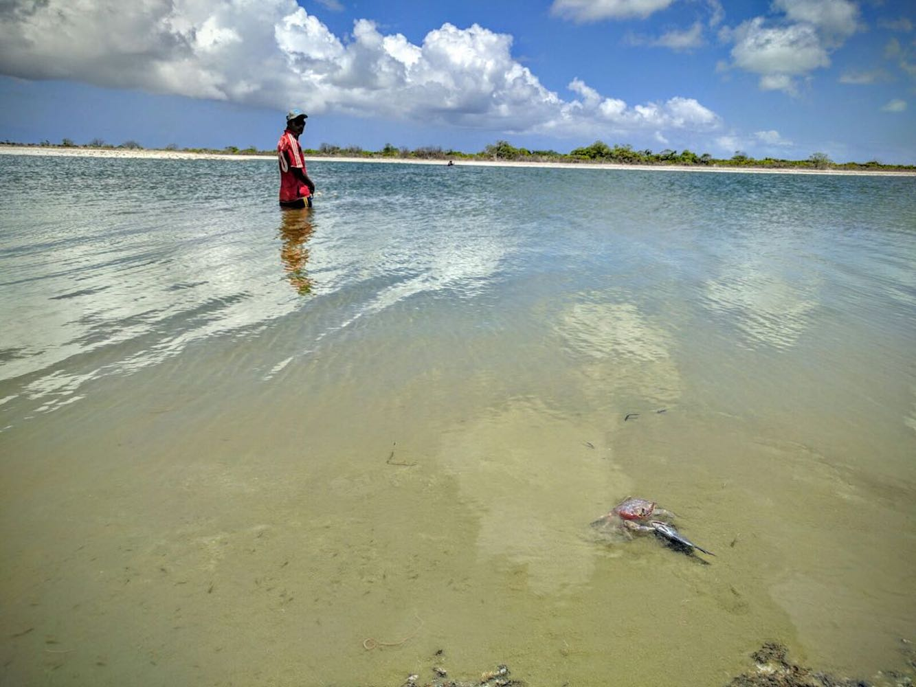 C – The secret fishing pond – the crab knows it too